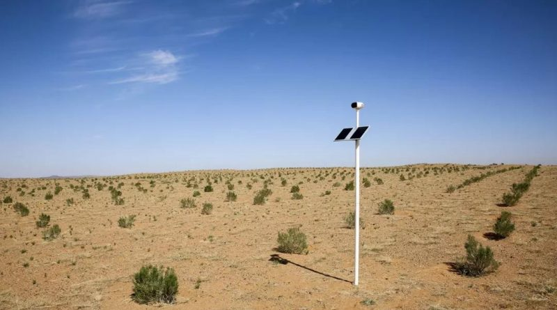 The Forest Guardian: Using Smart Agtech to Combat Desertification